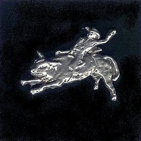 #12 bull rider