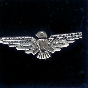 #24 thunderbird